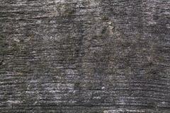 Linje wood textur Arkivfoto