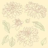 Linjen skissar av pioner royaltyfri illustrationer