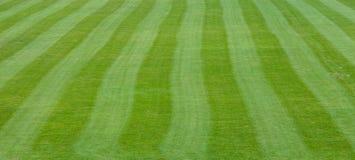 Linjer av fotbollfältet Royaltyfri Foto