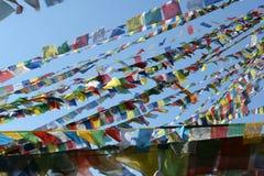 Linjer med buddistiska flaggor royaltyfri bild