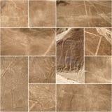 Linjer och Geoglyphs av Nazca, Peru Arkivfoto