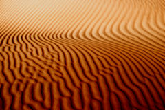 linjer sand Arkivbild