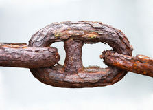 Link of chain Stock Photography