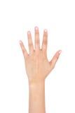 Linke Hand der Frau, welche die fünf Finger zeigt Stockbild