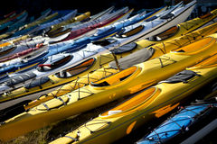 Linke up of see ayaks Royalty Free Stock Photography