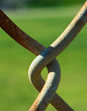 Linked. Detail of rusty chain-link fence with green background Royalty Free Stock Photography