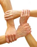 Linked hands Stock Photography