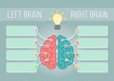 Linker en Juist Brain Infographics royalty-vrije illustratie