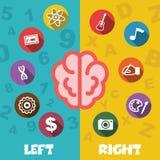 Linker en juiste hersenen vector illustratie