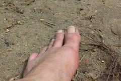 Linkerbeen op het zand stock fotografie