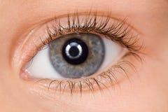 Linkes blaues Auge des Kindes mit den langen Wimpern Lizenzfreies Stockbild