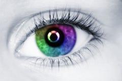 Linkes mehrfarbiges Auge des Kindabschlusses oben Stockfotografie