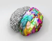 Linkes und rechtes Gehirn-Konzept-Perspektive lizenzfreie abbildung