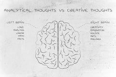 Linkes und rechtes Gehirn mit den Funktionsbeschreibungen, analytisch gegen c Lizenzfreie Stockfotografie