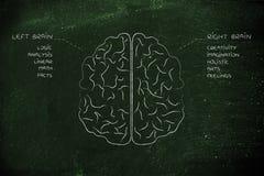 Linkes und rechtes Gehirn mit Funktionsbeschreibungen Stockfotografie