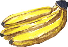 Linking of bananas Stock Photography