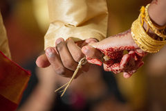 Linking pinky fingers at a Ceylonese Hindu wedding Royalty Free Stock Photo