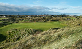 Links golf par 3 hole in trailing light with wind blown grass Stock Photography