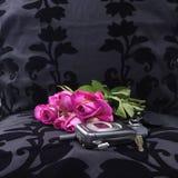 Links am Sitz (nach einem romantischen Abendessen) Stockbild