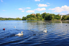 Linlithgow Castle Royalty Free Stock Photos