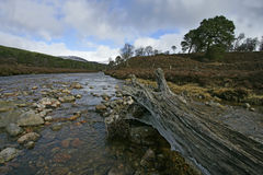Linn of Quocih Royalty Free Stock Photo