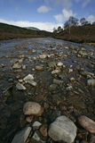 Linn of Quocih Stock Images