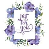Lino colorido Flor botánica floral Cuadrado del ornamento de la frontera del capítulo Fotografía de archivo libre de regalías