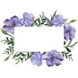 Lino colorido Flor botánica floral Cuadrado del ornamento de la frontera del capítulo Imágenes de archivo libres de regalías