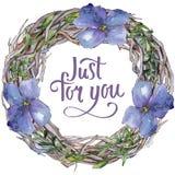 Lino colorido Flor botánica floral Cuadrado del ornamento de la frontera del capítulo Fotos de archivo libres de regalías