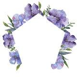 Lino colorido Flor botánica floral Cuadrado del ornamento de la frontera del capítulo Imagen de archivo
