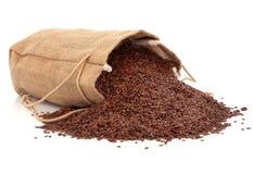 Lino del seme di lino Immagini Stock