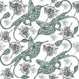 Linocut Hummingbird background Royalty Free Stock Photo
