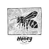 Linocut with a picture of bee and honey label Royalty Free Stock Photography