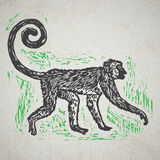 Linocut tropical Jungle Monkey on background Stock Photos