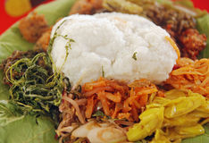 Linopot: Gå traditionellt i Sabah, Malaysia Royaltyfria Bilder