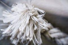 Linowe tekstury na schronieniu Zdjęcie Stock