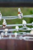 Linowi temblaki. Zdjęcie Royalty Free
