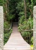 Linowy most Obrazy Stock