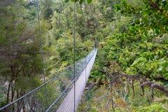Linowy most w dżungli Abel Tasman park narodowy w Nowym Ze Fotografia Royalty Free