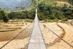 Linowy wiszący zawieszenie most w Nepal z paddyfield i turystą Obraz Stock