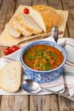 Lins- och tomatsoppa Royaltyfria Foton