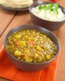 Linse-Curry lizenzfreie stockfotografie