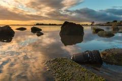 Linse im Wasser Stockfoto