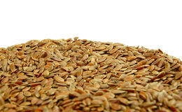 Linseed Stock Image