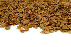 Free Linseed Stock Photography - 20653472