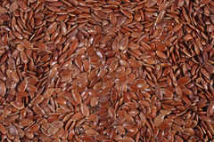 Linseed background Royalty Free Stock Images