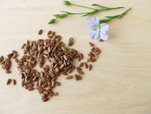 Linseed and flax flower Stock Image