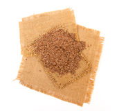 Linseed Stock Photography
