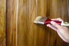 Linseed oleju lakieru farba na drewnie zdjęcie stock