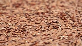 Linseeds panning video. Close up panning moving over linseeds or flax seeds video stock video